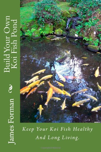 Build your own koi fish pond keep your koi fish healthy for Build your own koi pond filter
