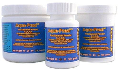 Aqua prazi koi care pond treatment fluke parasite 25 grams for Koi treatment