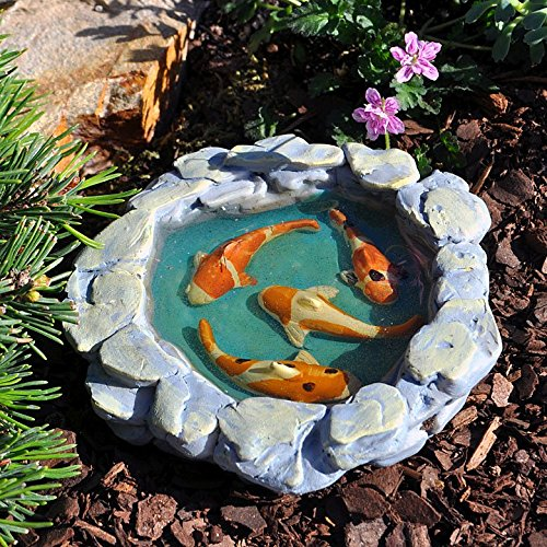Miniature fairy garden tranquil koi pond koi water peace for Mini koi fish