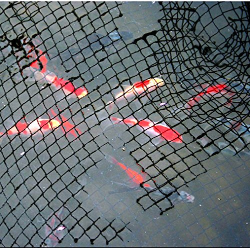 15 x 20 ft pond net cover easy setup pool and fishpond for Fish pond nets